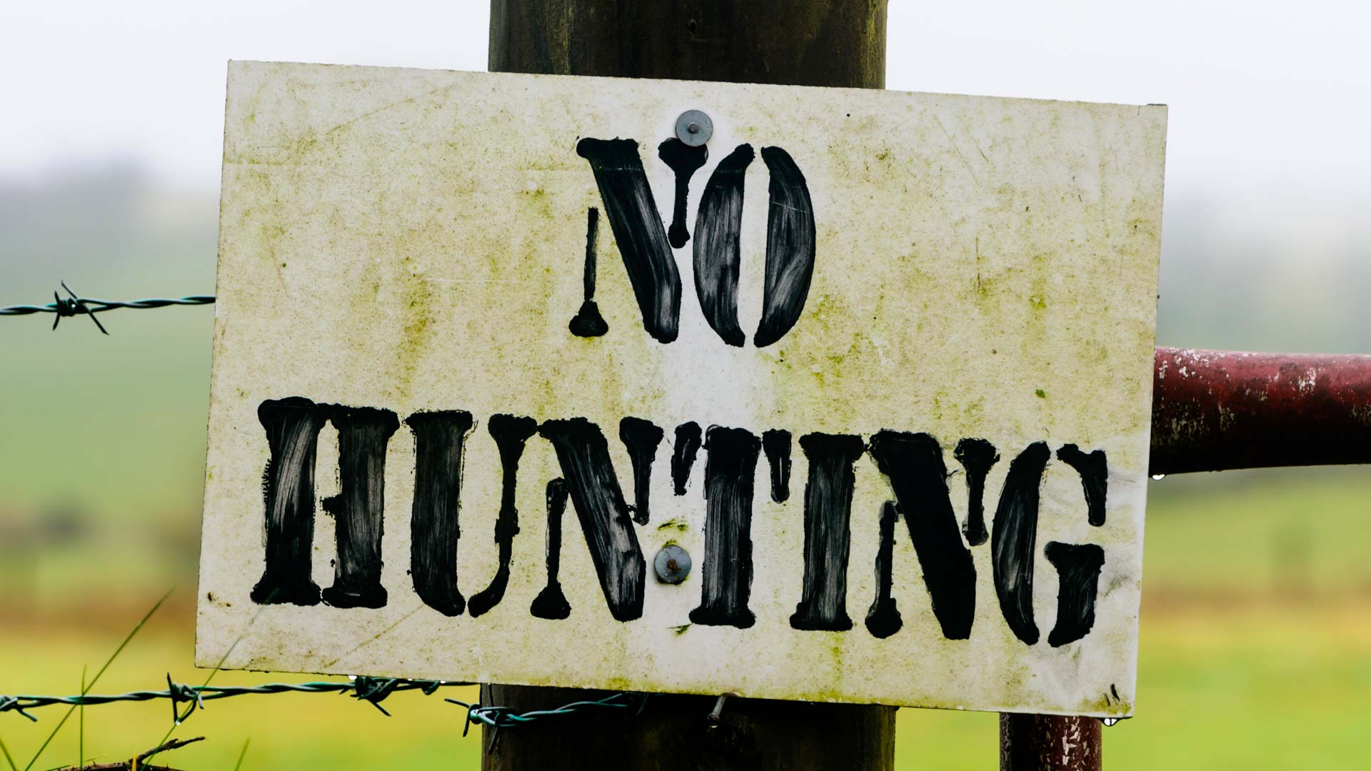La Nintendo promuove la caccia ad animali in via di estinzione