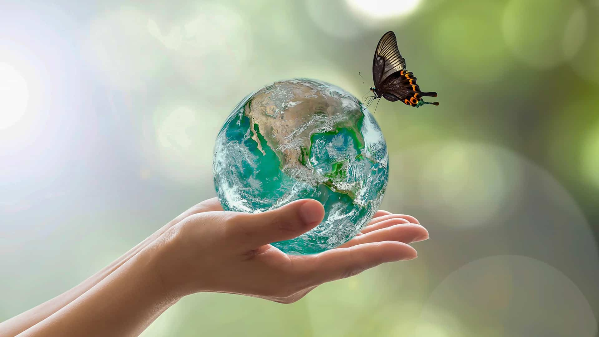 Terra, Madre di tutte le creature